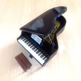 Piano a queue miniature noir